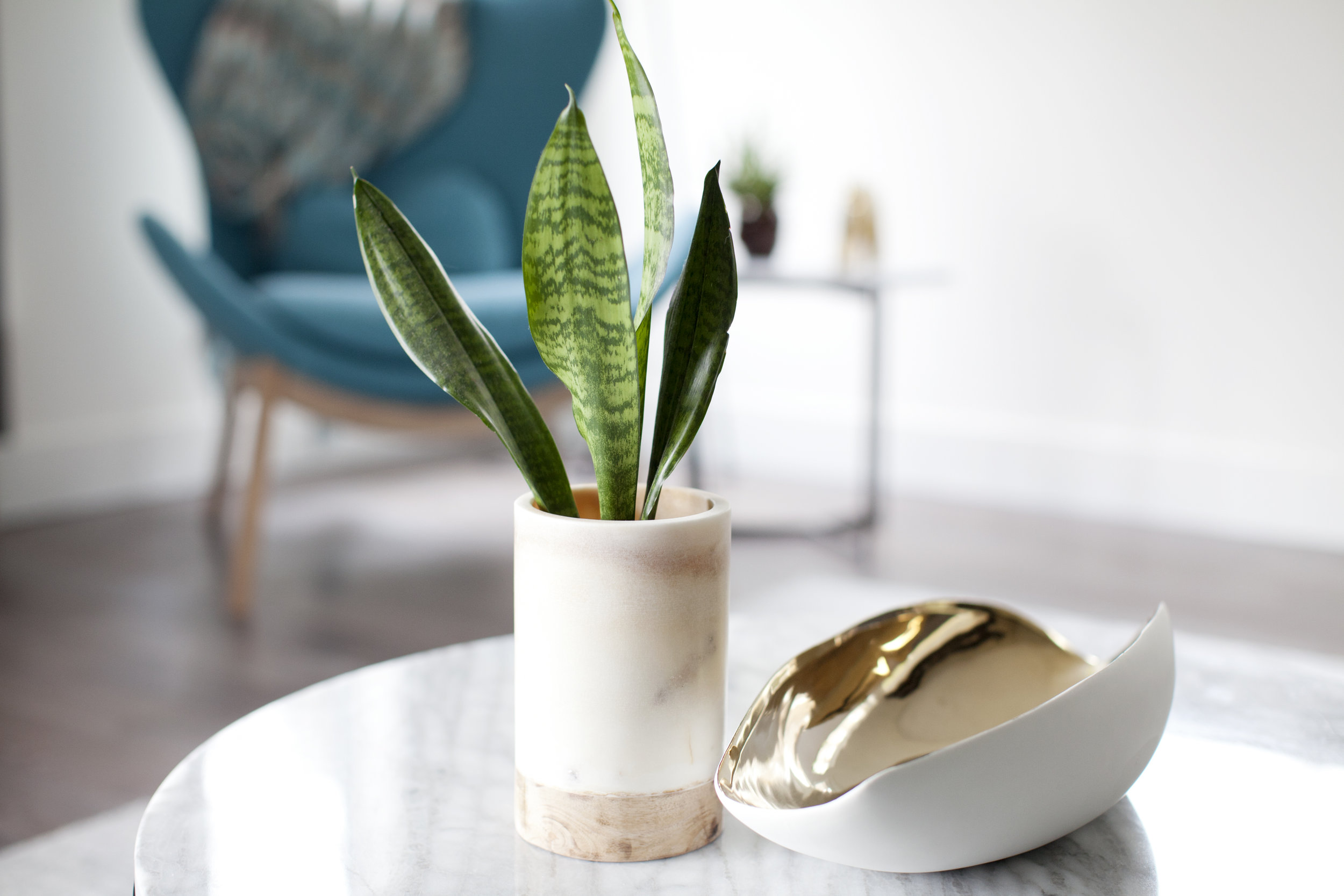 Pure Designs N Van Colwood 9653