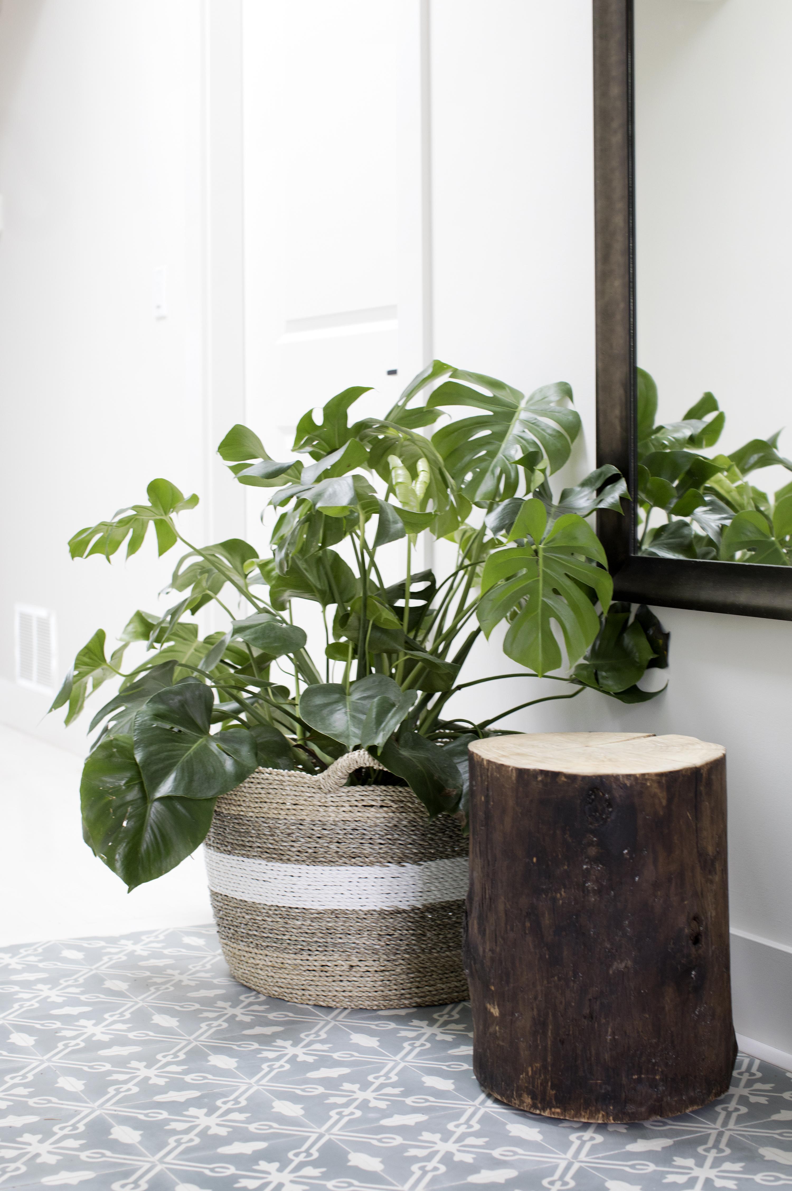 Pure Interior Design_8066